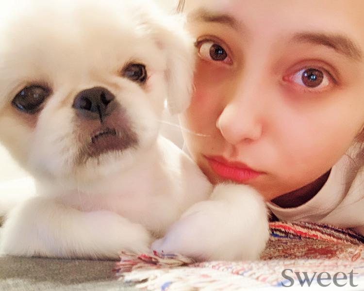 """注目の犬スタグラマー!? モデルに""""添い寝""""するワンちゃんに癒される♡"""